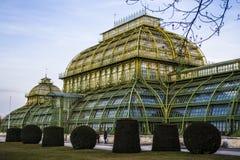 Vienna, Austria 1° marzo 2019 Costruzione di una serra delle erbe e dei fiori La costruzione di vetro con le inserzioni di verde  immagine stock libera da diritti