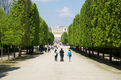 VIENNA, AUSTRIA - APR 30th, 2017: Public park in Schonbrunn Palace Schonbrunn Palace. It`s a former imperial 1441-room Stock Image