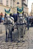 Vienna Austria cab tourism cobblestones Royalty Free Stock Image
