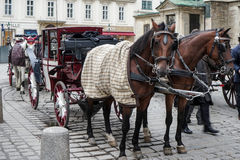 VIENNA, AUSTRIA/EUROPE - SEPTEMBER 22 : Horse And Carriage For H