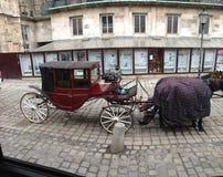Vienna Austria Horse Carriage Stock Photo