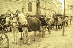 VIENNA, AUSTRIA. Horse-driven carriage, Vienna, Austria Royalty Free Stock Photography
