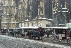 Tourist carriage are drawn by horses and staying nearby St. Stephen`s Cathedral, Vienna stock images