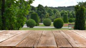 VIENNA, AUSTRIA - JUNE 19, 2018: Picturesque view. Of Schonbrunn Palace park stock photography