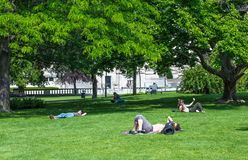 VIENNA, AUSTRIA - MAY 26: People are resting and relaxing in popular public Burggarten park in warm sunny day in Vienna, Austria,. On May 26, 2019, beautiful stock photography