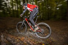 Mountainbiker rides through forest stream royalty free stock photo