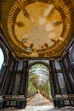 Romantic garden walkway forming a green tunnel of acacias in summer residence located in Vienna Stock Images