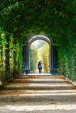 Schonbrunn Palace in Vienna, romantic garden walkway forming a green tunnel of acacias in Vienn. Vienna, Austria, October 14, 2016: Schonbrunn Palace in Vienna Stock Photography