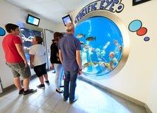 VIENNA, AUSTRIA - SEPTEMBER 8, 2017. Fisheye marine fishtank at Haus des Meeres zoo in Vienna, Austria. Fisheye marine fishtank at Haus des Meeres zoo in Vienna stock photo