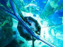 VIENNA, AUSTRIA - SEPTEMBER 8, 2017. Giant panoramic marine fishtank at Haus des Meeres zoo in Vienna, Austria. Giant panoramic marine fishtank at Haus des stock photography