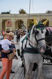 Vienna, Austria, September , 15, 2019 - nTourist taking pictures and caressing nCarriage Horses from in the Schonbrunn stock image