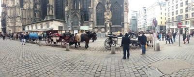 Vienna Austria Street Scene Horses Stock Image
