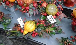 Vienna Christmas flowers. Christmas flower arrangements in Vienna Royalty Free Stock Image