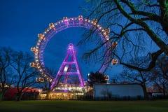 Vienna Giant Wheel Illuminated Stock Photography