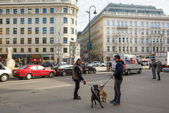 Vienna historical city center. Vienna, Austria. Royalty Free Stock Photography