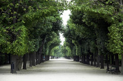 Vienna's Schloss schonbrunn Stock Photography