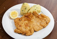 Vienna schnitzel with mashed potatoes and baby onion Stock Image