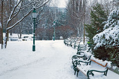 Vienna - Stadtpark in winter Royalty Free Stock Image