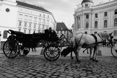 Vienna street attraction, horse ride Stock Photography