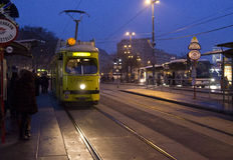 Vienna touristic tram `Ring` Stock Image