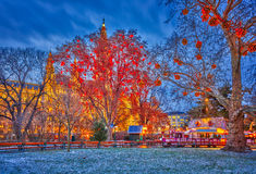 Vienna town hall and park. Decorated for Christmas Royalty Free Stock Image
