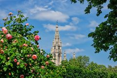 Vienna Town Hall Royalty Free Stock Photography