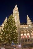Vienna - townhall by christmas market in the night. Athe christmas-tree Stock Photos