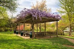Free Vienna VA Public Picnic Area Royalty Free Stock Images - 115756589