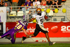 Vienna Vikings vs. Bergamo Lions Stock Photography