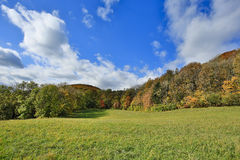 Vienna Woods in autumn Royalty Free Stock Photo