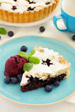 Viennese cake with blueberries Royalty Free Stock Image