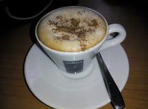 Viennese cappuccino Royaltyfri Foto