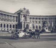 Viennese Horse And Carriage Stock Image