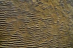 Viento, agua y arena imagenes de archivo