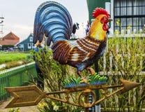 Viento de cobre amarillo Vane Zaanse Schans Village Holland Países Bajos del gallo Imagen de archivo libre de regalías