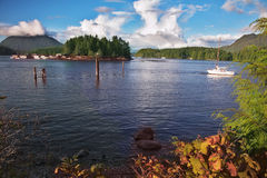 Viento de la mañana en la isla Vancouver imagenes de archivo