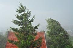 Viento de la tempestad fotos de archivo