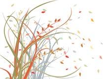 Viento del otoño Fotos de archivo libres de regalías