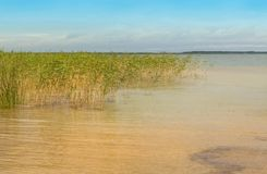 Viento en el lago Svityaz Fotos de archivo