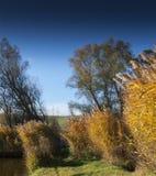 Viento en a orillas del lago de un pequeño lago de la pesca en Sarisap, Hungar Fotografía de archivo