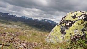Viento y piedra en un llano de la tundra almacen de video