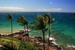 Vientos comerciales de Maui imágenes de archivo libres de regalías