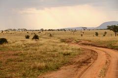 Vientos del camino de tierra a través de la sabana Fotografía de archivo libre de regalías