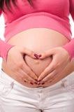Vientre de la explotación agrícola de la mujer embarazada Imágenes de archivo libres de regalías