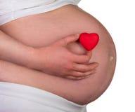 Vientre de la mujer embarazada Fotografía de archivo