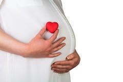 Vientre de la mujer embarazada Imágenes de archivo libres de regalías