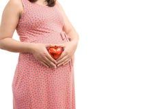 Vientre de la mujer embarazada que lleva a cabo el corazón del regalo Embarazo sano Foto de archivo