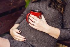 Vientre de la mujer embarazada que se sienta en un oscilación, con una taza de té Mujer embarazada que se relaja en el parque Imágenes de archivo libres de regalías