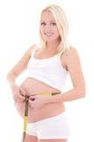Vientre de medición de la mujer embarazada de los jóvenes, aislado en el backgrou blanco Imagen de archivo libre de regalías