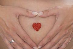 Vientre del bebé con las manos de la madre Imágenes de archivo libres de regalías